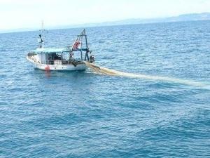 pesca-fermo-biologico-in-puglia-dal-16-agosto-coldiretti-pugliarischio-aumento-prodotti-stranieri--1468216601-media