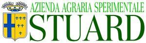 logo stuard istituzionale